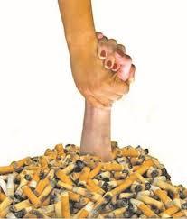 العالمي للتدخين